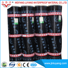 Waterproof Material High Quality SBS/APP Modified Bitumen Waterproof Membrane from Manufacturer