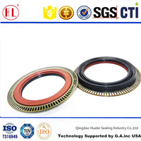 spring loaded sealing lip rear axle oil seal with metal plate for AO WEI