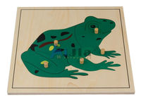 Montessori wooden toys ,Education toys ,learning toys-frog puzzle