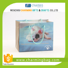 Luxury Laminated Paper Shopping Bag for Promotion