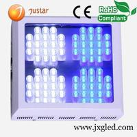 5 years warranty Meanwell driver greenhouse led grow light