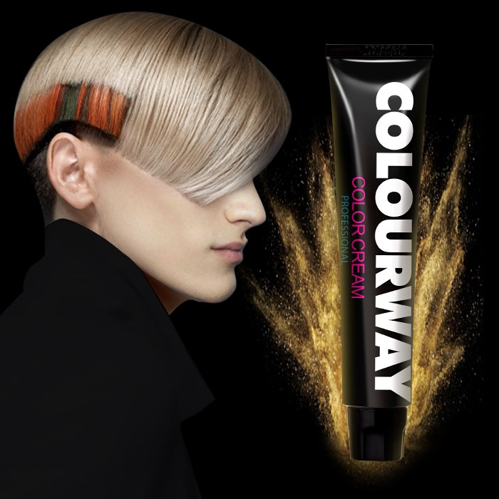 OEM/ODM salon professional permanent hair colour cream ammonia free hair dye color
