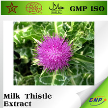 Free sample Milk Thistle Extract powder