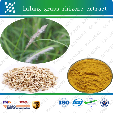 natural treat acute nephritis Lalang Grass Rhizome Extract