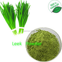 GMP Manufacture Supply Leek Extract Power 10:1,20:1 Leek Seed Extract Powder