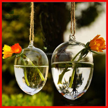 Hanging Teardrop Terrarium Kit, Air Plant Glass Orb