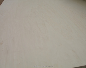 China AAA quality new poplar wood plywood