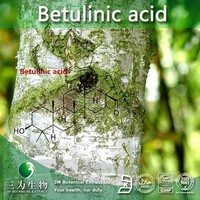 3W supply Betulinic acid from Betula Platyphylla Extract, Betula pendula L. (Natural and Health)
