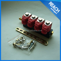 LPG/CNG/NGV/GNV common rail injector for 3~6 cylinder fuel injection kits