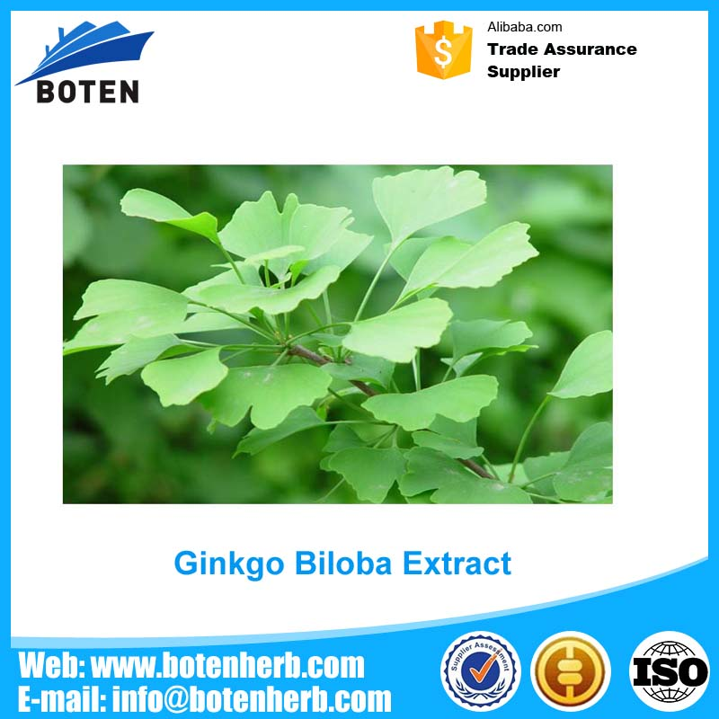 China cheap ginkgo biloba softgel capsule 1000mg China Factory