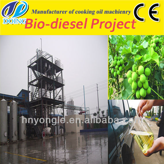 China supplier of jatropha biodiesel plant/ jatropha to biodiesel