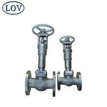 Competitive Price Flanged Connect Cast Iron F316L OEM Bellow Globe Valve Drawing