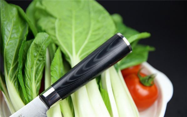 best stainless steel coating kitchen knife se