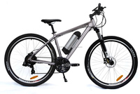 29 Inch EN15194 Mountain Electric Bicycle (TDE11Z)
