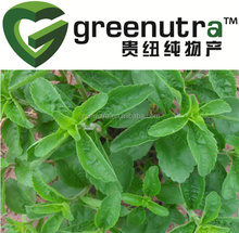 Negotiable price Stevia 91722-21-3 with large production capicity