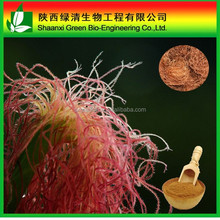 Wholesale Corn stigma extract 20:1, 100% Organic Corn Silk Extract Powder