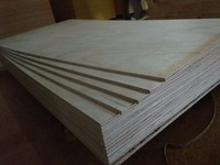 General plywood 1.6mm(from plywood manufacturer)