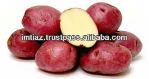 Best Red Potato from Pakistan