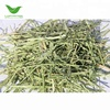 T&H American alfalfa hay bales for sale