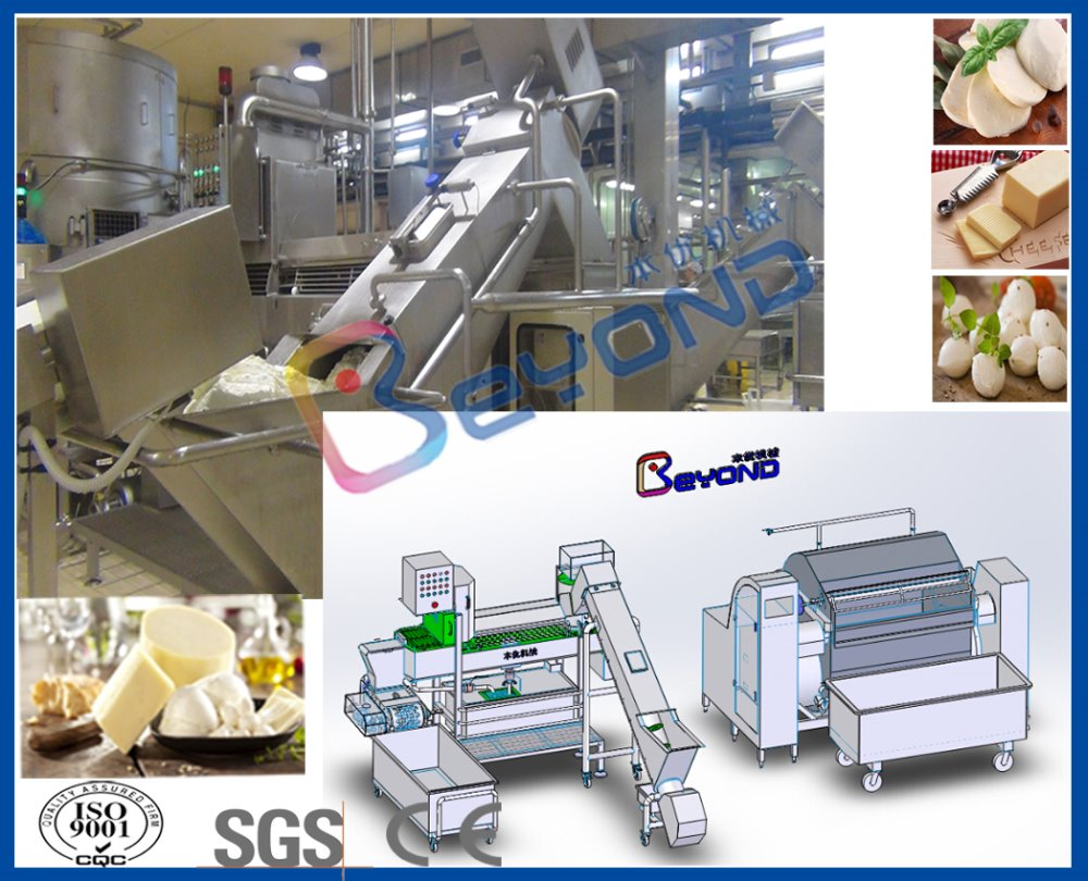 mozzarella cheese machine/equipment