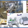 Mozzarella Cheese Machine Equipment