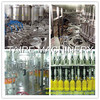 Taire Bottled Fruit Juice Qualified Hot Filling Machine