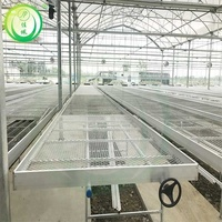 Cheap agricultural cultivation glass green house