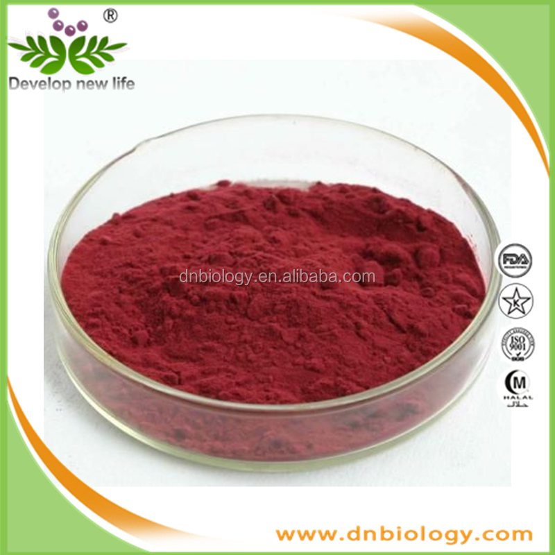 FDA&ISO grape seed extract with Proanthocyanidins 95%,100% natural grape seed extract (high orac value)