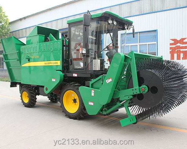 pumpkin seed harvesting machine | pumpkin seed harvester