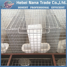 Chicken Cages / Quail Cages / Poultry Cages (Factory)