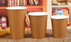 Biodegradable kraft paper cups