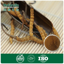High quality cordyceps extract/ Chinese Caterpillar Fungus extract