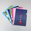 Hot sale China supplier cheap pp clear files a4 folder document holder