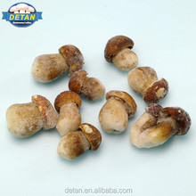 Detan Frozen Boletus Edulis Chinese Mushrooms