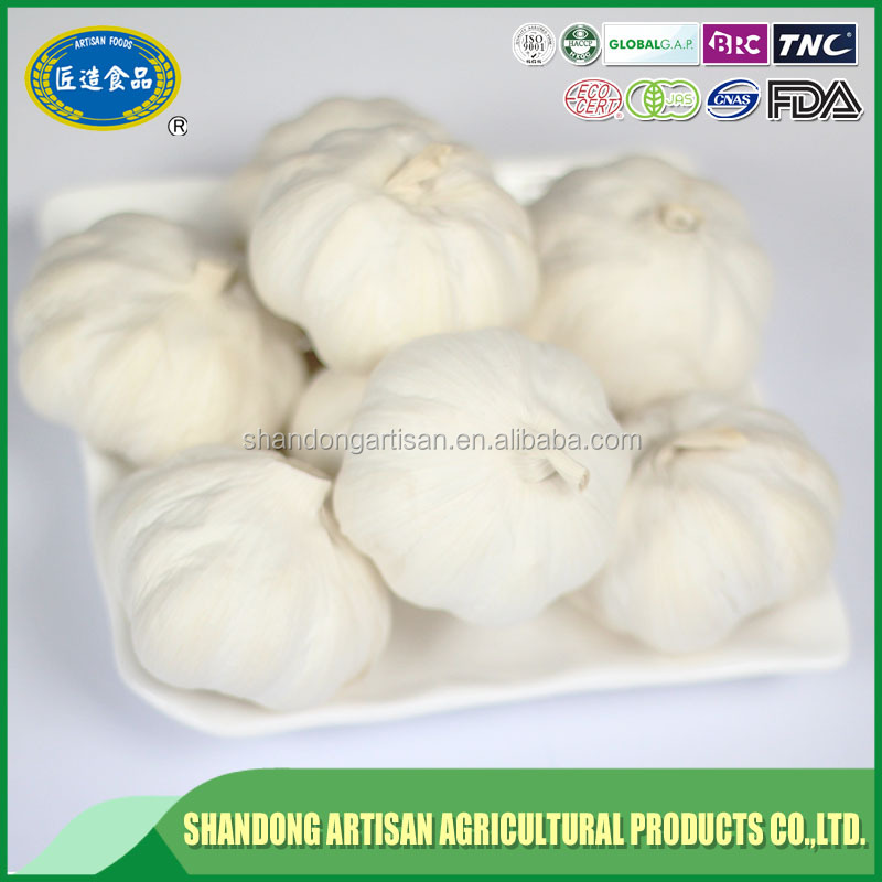 Factory directly sale nice garlic for export China manufacturer