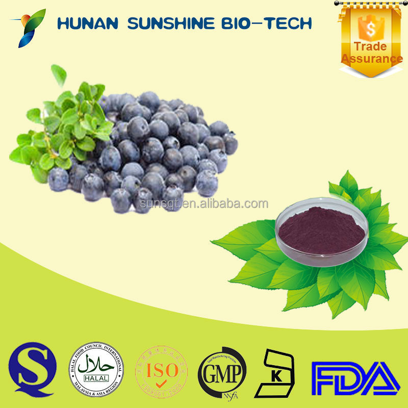 Plant Extract Vaccinium myrtillus L. / Vaccinnium uliginosum L. have the Effect of Antiphlogistic and Bactericidal