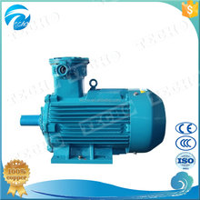 Explosion proof Explosion-proof induction Electric Motor
