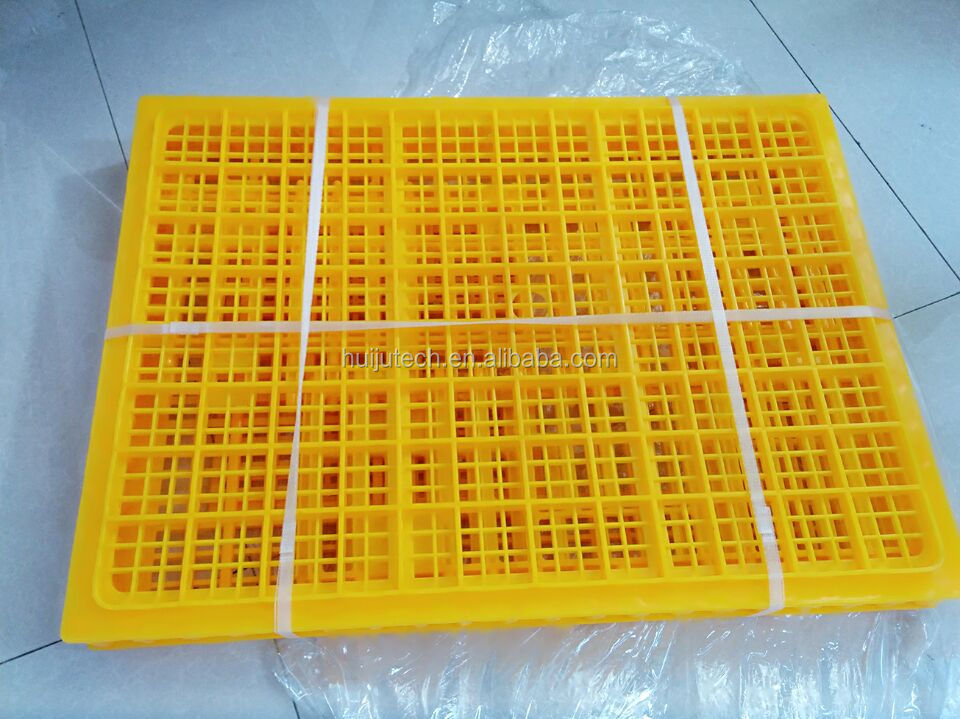 poultry cage for above 10 chickens transport box HJ-DN015