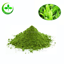 Factory Favorable Price Free Sample Instant Matcha Green Tea Powder Made In China