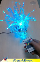 Frankever fiber light decoration optical light with led engine
