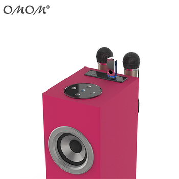 OM-269M KIDS karaoke tower speaker with microphone for hot sell