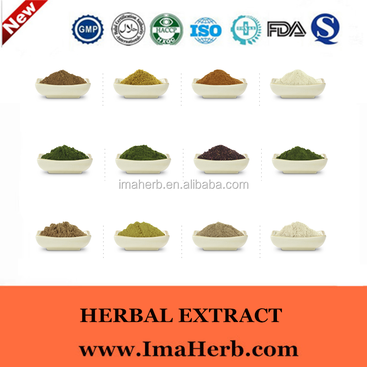 GMP Natural High quality fructus momordicae extract