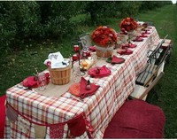 Picnic Camping wooden Folding long Table