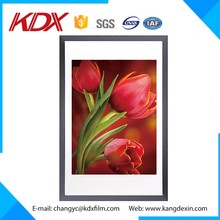 3D Lenticular Picture of Beautiful Flower Pot Photo Frame