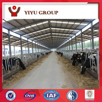 wide span light frame steel structure cattle shed with ISO