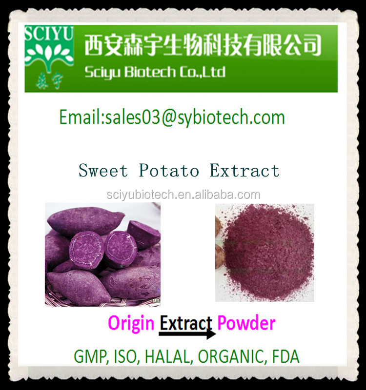 Pure Natural Sweet Potato Extract 5:1 10:1 20:1