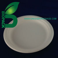 Disposable Sugarcane Bagasse Food Tray
