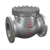 DN15-DN1200 WCB Single-track Flanged Check Valve