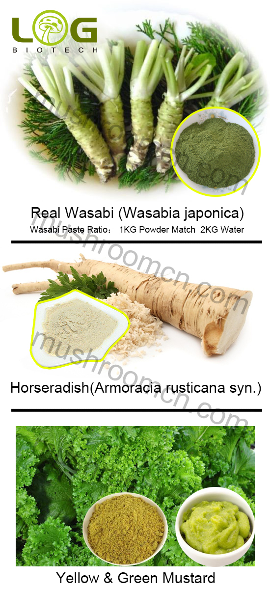 real sushi wasabi japonica powder
