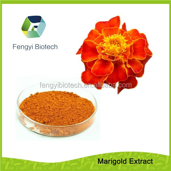 Marigold Extract Powder-lutein & zeaxanthin help to prevent heart disease